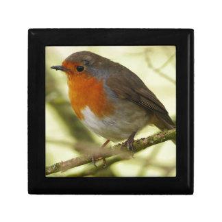 Red Robin Gift Box