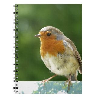 Red Robin Notebooks