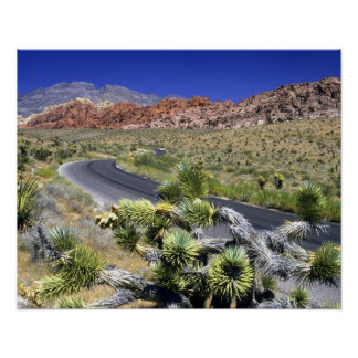 Red Rock Canyon National Conservation Area, Las Poster