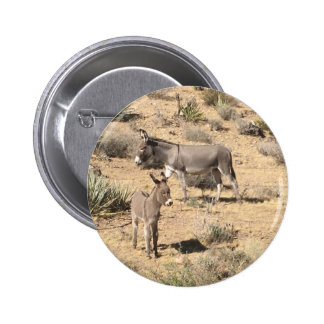Red rock state park nv donkey 2 inch round button