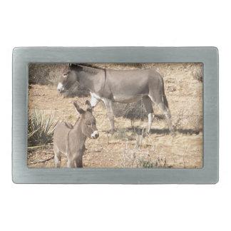 Red rock state park nv donkey belt buckles