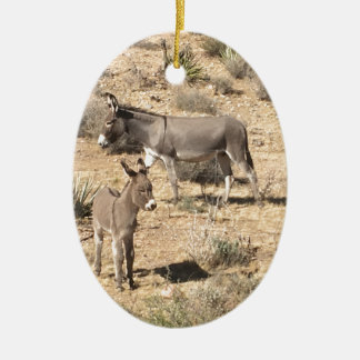 Red rock state park nv donkey ceramic ornament