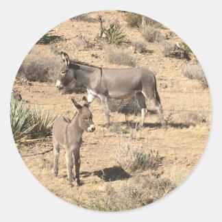 Red rock state park nv donkey classic round sticker