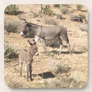 Red rock state park nv donkey coaster