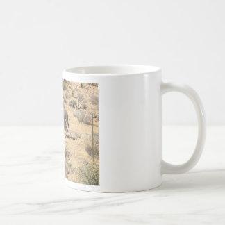Red rock state park nv donkey coffee mug