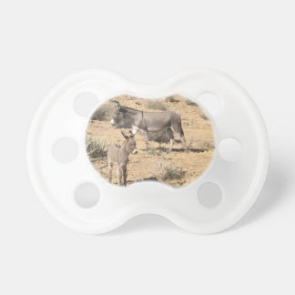 Red rock state park nv donkey pacifier
