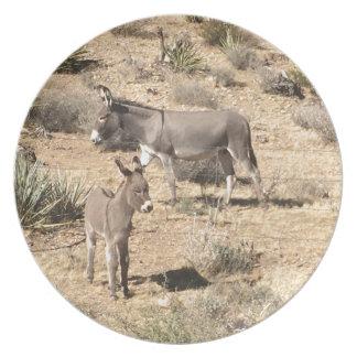 Red rock state park nv donkey plate