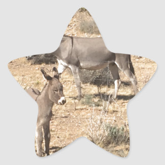 Red rock state park nv donkey star sticker