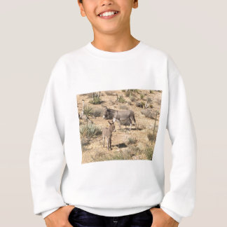Red rock state park nv donkey sweatshirt