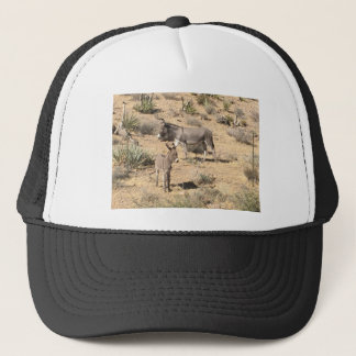 Red rock state park nv donkey trucker hat