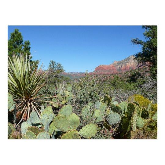 Red Rocks and Cacti I Postcard