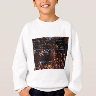 red rocks on the mountain glory sweatshirt