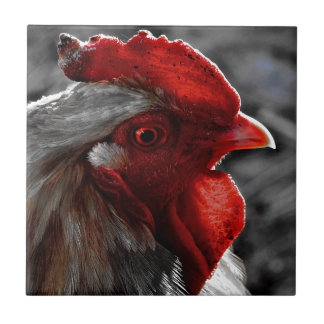Red Rooster Color Spot Tiles