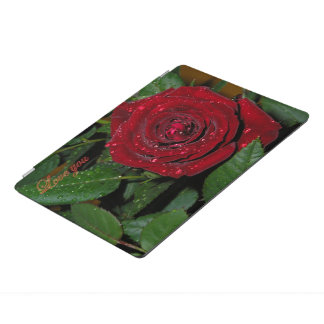 Red Rose #2 iPad Pro Cover