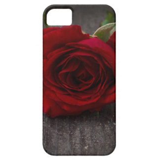 red rose background case for the iPhone 5
