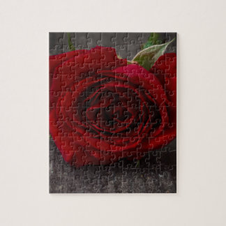 red rose background jigsaw puzzle