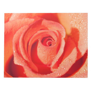 Red rose blossom notepads