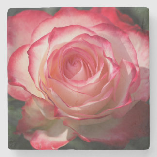 Red rose blossom stone coaster