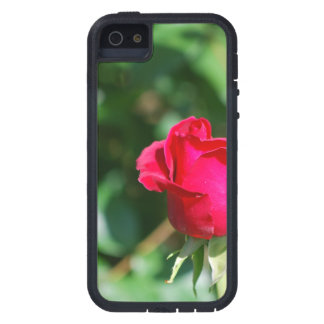 Red Rose Bud Case For The iPhone 5