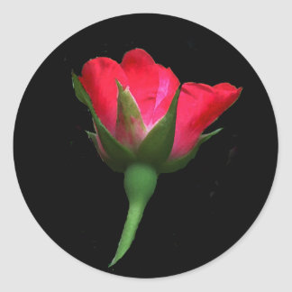 Red Rose Bud Round Sticker