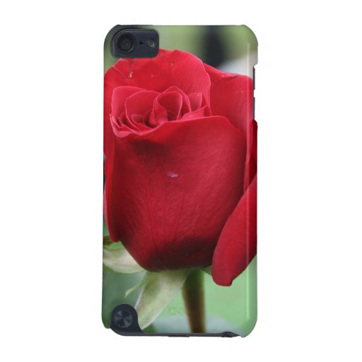 Red rose iPod touch 5G case