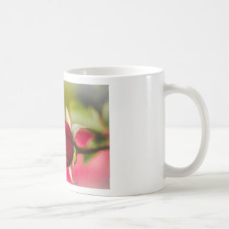 Red rose close up design coffee mug