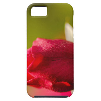 Red rose close up design iPhone 5 cover