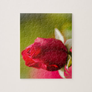 Red rose close up design jigsaw puzzle