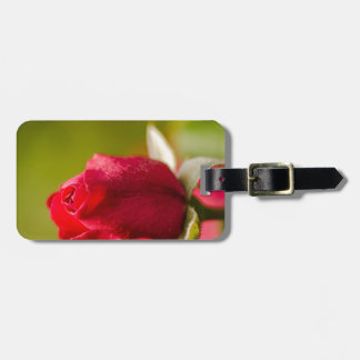 Red rose close up design luggage tag