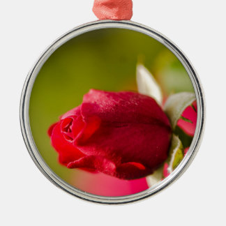 Red rose close up design Silver-Colored round ornament