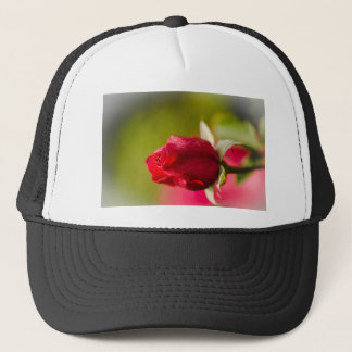 Red rose close up design trucker hat