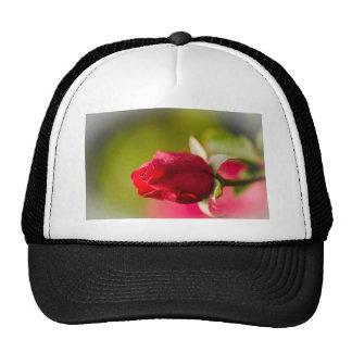 Red rose close up design trucker hat