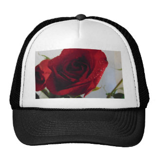 Red Rose Delight Trucker Hat