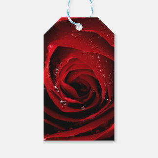 Red Rose Floral Flower Rose Petals Blossoms Dew Gift Tags