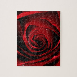 Red Rose Floral Flower Rose Petals Blossoms Dew Jigsaw Puzzle