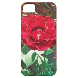 Red Rose Flower Garden Case For The iPhone 5
