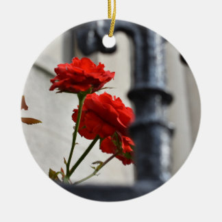 Red Rose Flower Garden Gate New York Photography Ceramic Ornament