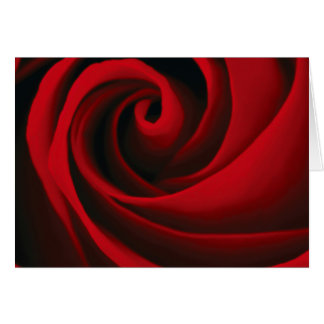 Red Rose Flower Swirl Classy Design Greeting Card