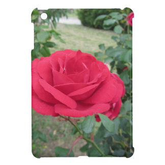 Red rose flowers with water droplets in spring iPad mini case
