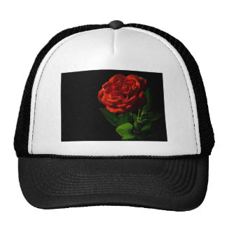 red-rose-macro-still-image-studio-photo trucker hat
