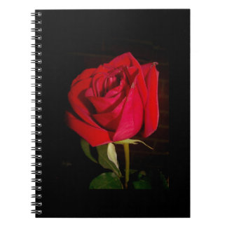 Red Rose Notebooks