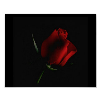 Red Rose on Black-add words if you choose Poster