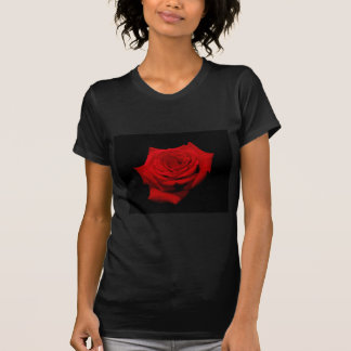 Red Rose on Black Background T-Shirt