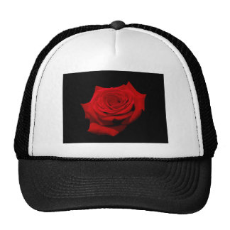 Red Rose on Black Background Trucker Hat