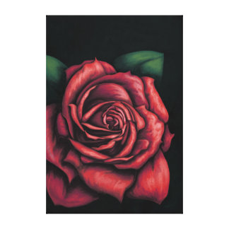 Red rose on black bottom canvas print