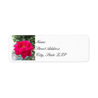 Red Rose Return Address Lables Return Address Label
