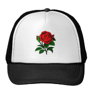 Red Rose - Vintage Style Drawing of Flower Trucker Hat