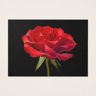 Red Rose w/ Dew Drop on Black Background Custom Business Card