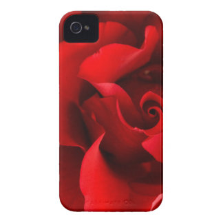 Red Rose w/ Dew Drop on White Template- Customized Case-Mate iPhone 4 Case