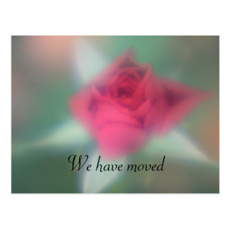 Red Rose We have moved Post Card Post Card
